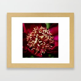 Red Nippon Beauty Framed Art Print