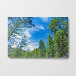 Siberian mountain taiga, mountains in the clouds, Altai Metal Print