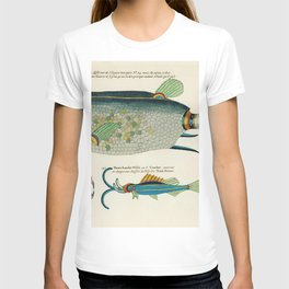 Vintage Illustration of decorated wash basins published in 1884 by JL Mott Iron Works T-shirt