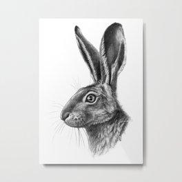 Hare profile G138 Metal Print