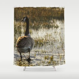 The Golden Goose Shower Curtain