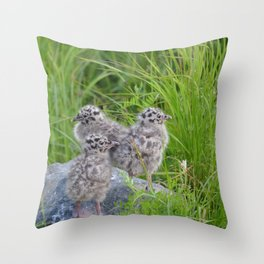 Triplets - Baby Seagulls Throw Pillow