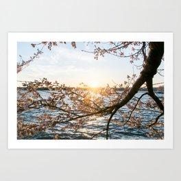 Sun Over the Horizon Art Print