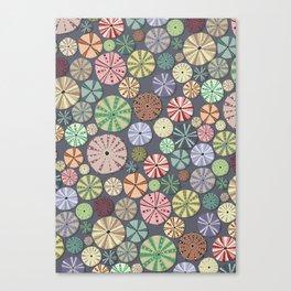 Sea Urchins - Pattern Canvas Print