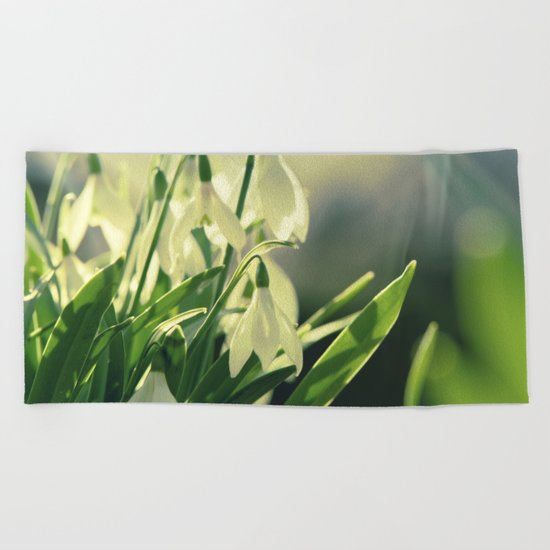 Snowdrops impression from the garden Beach Towel