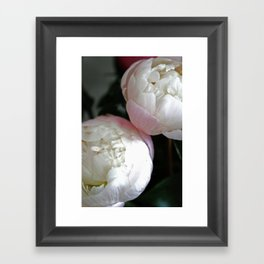 Peony in darkness Framed Art Print