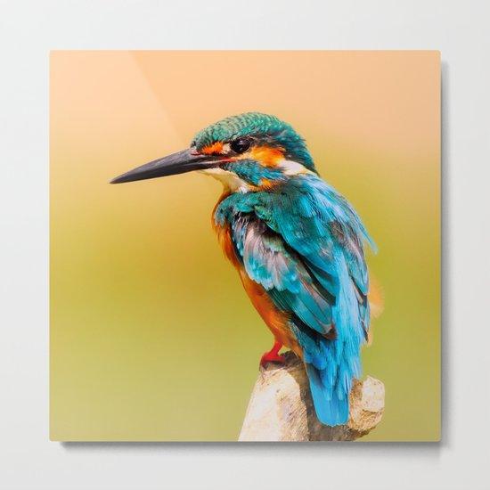 Radiant Bird Metal Print