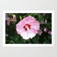 Purrty Flower Art Print