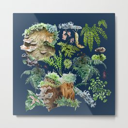 Fungi & Ferns Blue Metal Print
