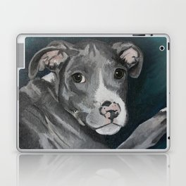 Pluto the Pitbull Laptop & iPad Skin