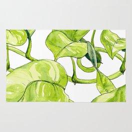 Devils Ivy Illustration Rug