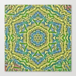 Beautiful wattle mandala Canvas Print