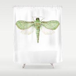 Pepe Tuna / Puriri Moth 2016 Shower Curtain