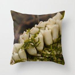 Moss Growing in Dead Deer Teeth #1 Throw Pillow