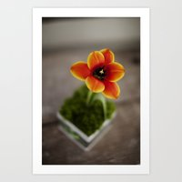 FLOWER ON FIRE Art Print