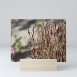 Closeup Wild Grass and Purple Verbena at Coachella Wildlife Preserve Mini Art Print