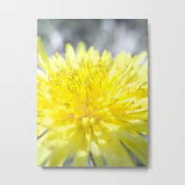 Spring has come Metal Print