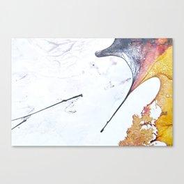 Fossils 62 Canvas Print