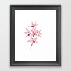 Pink Orchid Flower Framed Art Print