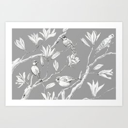 Magnolia flower and birds ink-pen drawing Art Print