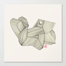 3B Canvas Print