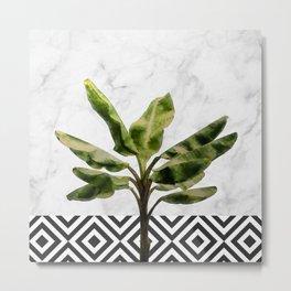 Banana Plant on White Marble and Checker Wall Metal Print