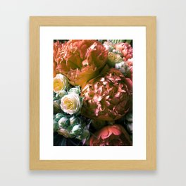piones Framed Art Print