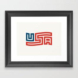 USA Flag Framed Art Print