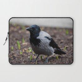 Grey crow bird Laptop Sleeve
