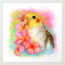 Cockatiel with frangipani Art Print