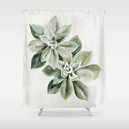 Sedum Succulents Shower Curtain