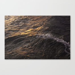 Swish Canvas Print