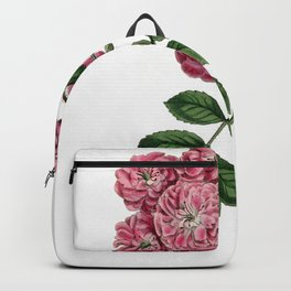 Bramble-Flowered Rose / W. Curtis 1857 Backpack