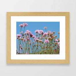 Cornish Pink Thrift Framed Art Print
