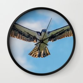 Nine Mile osprey IV Wall Clock