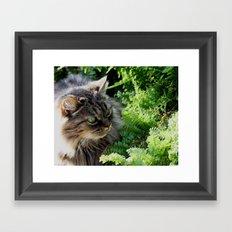 Natural Element Framed Art Print
