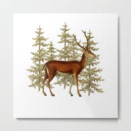 Wandering deer  Metal Print