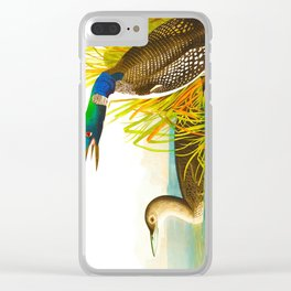 Great Norther Diver or Loon John James Audubon Scientific Birds Of America Illustration Clear iPhone Case