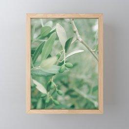 Olives Framed Mini Art Print