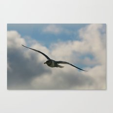Graceful Wings Canvas Print