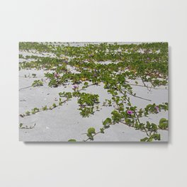 Railroad Vines on Boca II Metal Print