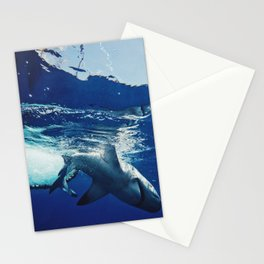 Shark Research Stationery Cards