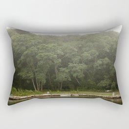 The Dingy Rectangular Pillow