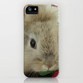 Lionhead Bunny iPhone Case