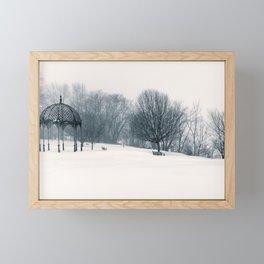 Ell Pond - Melrose, MA. January, 2015 Framed Mini Art Print