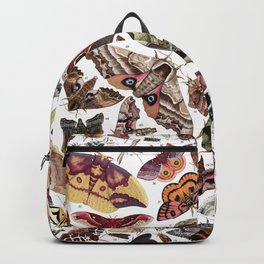 Moths of North America Backpack
