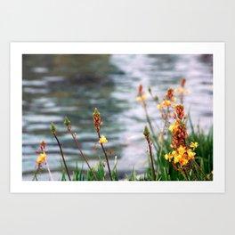 Lake Flora Art Print