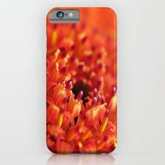 Orange Gerbera iPhone 6s Slim Case