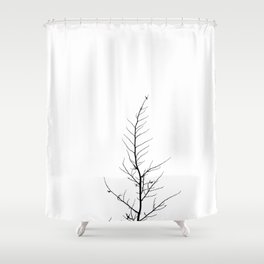 Forlorn Tree Shower Curtain