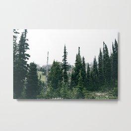 Forest XXVI Metal Print